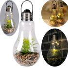 Lampa bateryjna ogrodowa latarenka OGRÓD W SZKLE LED przezroczysta 24cm Polux