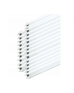 25x Świetlówka G13 T8 18W 1350lm 6500K Zimna 590mm OSRAM Smartlux PRO