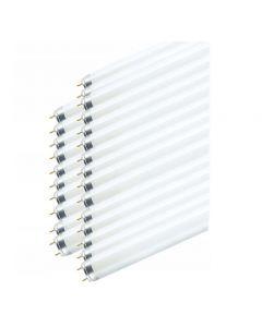 25x Świetlówka G13 T8 36W 3350lm 6500K Zimna 1200mm OSRAM Smartlux PRO