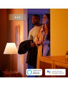 Philips HUE Buckram 2xReflektor SPOT LED Punktowy Czarny 2xGU10 + Ściemniacz ZigBee + Bluetooth 50472/30/P6