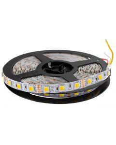 Taśma LED Pasek 12V 72W 300LED 5050 CCT 5m