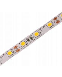 Taśma LED Pasek 12V 72W 300LED 5050 Ciepła 10mm 5m - wyprzedaż