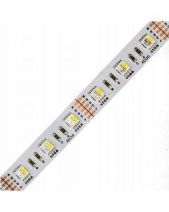 Taśma LED Pasek 12V 72W 5050 300LED RGB + Zimna 10mm 5m